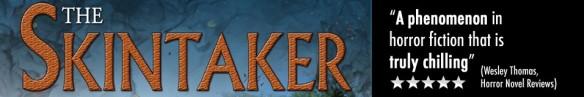 cropped-skintakerwp1.jpg